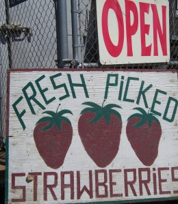 Open and strawberry sign